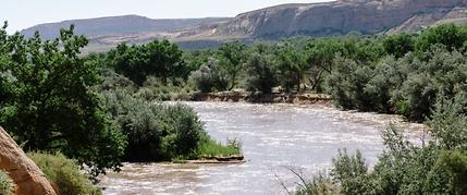 San Juan river rafting